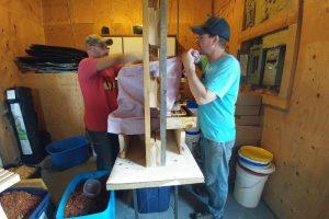 DIY Cider Press and Cider-Making