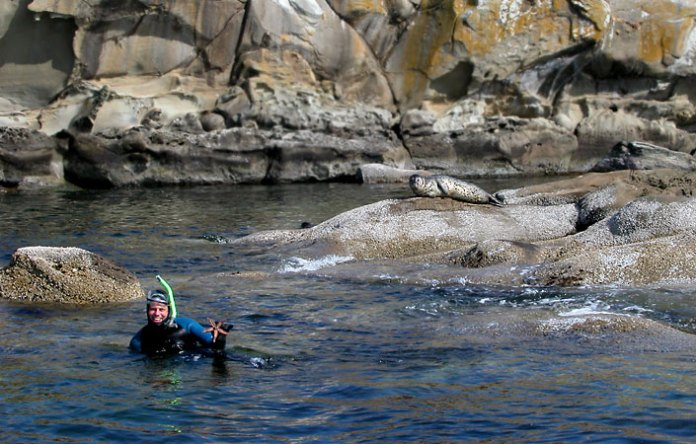 'Arris goes swimming with the seals.