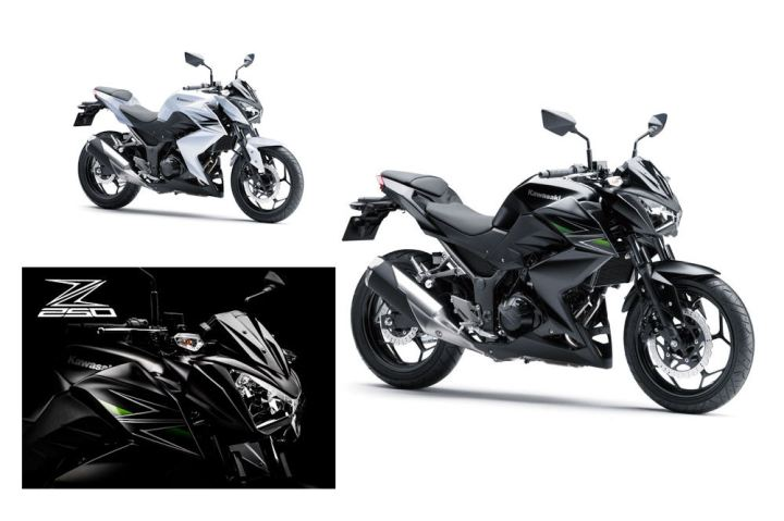 Here's what Kawasaki's latest quarter-litre looks like.