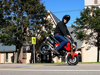 'Arris pulls a stoppie in downtown Sackville. He's lucky he didn't run into a cow. Photo: Zac Kurylyk