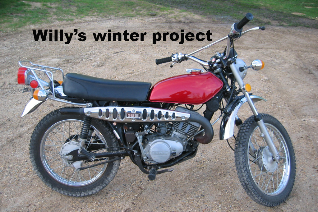 Willy in the winter