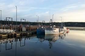 Dipper Harbour daybreak