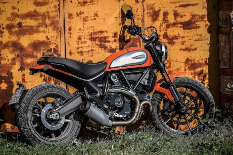 2019 Ducati Scrambler Icon19