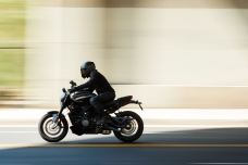 2020 Harley Davidson (21)