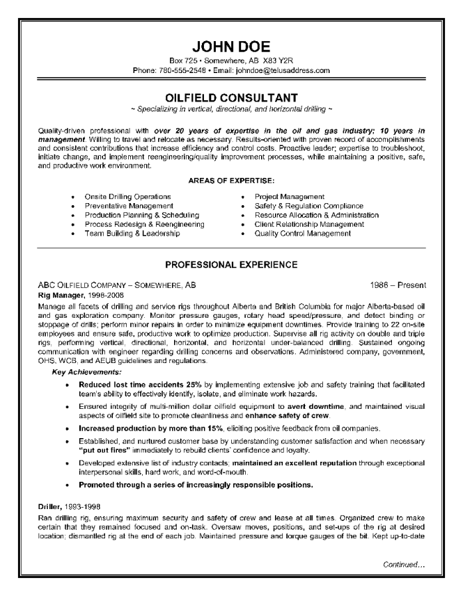 resume for consultant sample resume consultant 100 controller