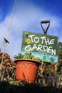 Garden Growing Guide: How To Prepare Your Garden