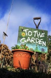 Preparing Your Garden