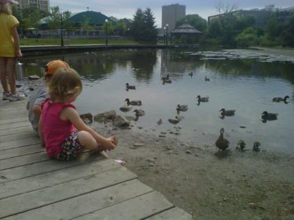 kids free ducks