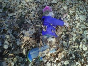 kids free playing in leaves