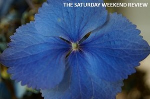 The Saturday weekend review Summer Days