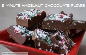Hazelnut Chocolate Fudge wm