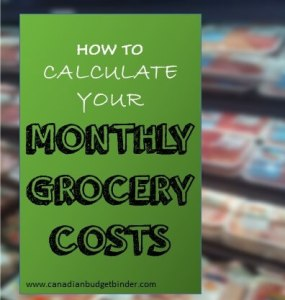 How To Calculate Your Monthly Grocery Costs: The Grocery Game Challenge 2016 #2 Jan 11-17