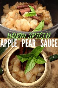 warm-spiced-apple-pear-sauce-5-pinterest