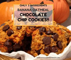 the-easiest-banana-oatmeal-chocolate-chip-cookies-ever-2
