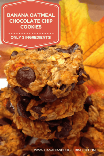 the-easiest-banana-oatmeal-chocolate-chip-cookies-ever-5