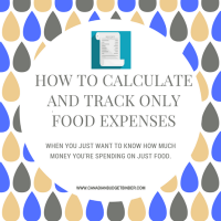 how to calculate and track only food expenseshow to calculate and track only food expenses