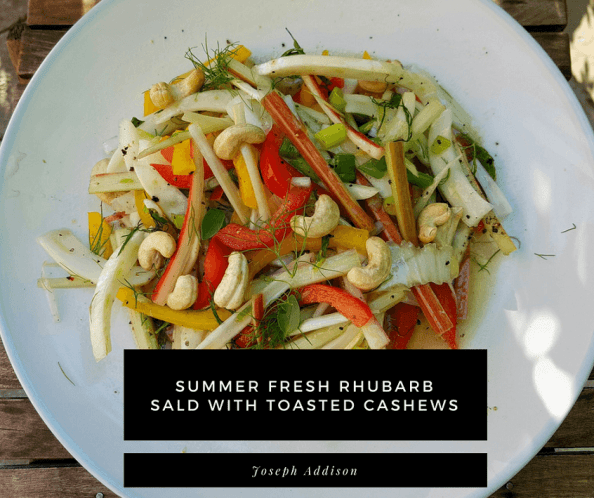 summer fresh rhubarb salad with toasted