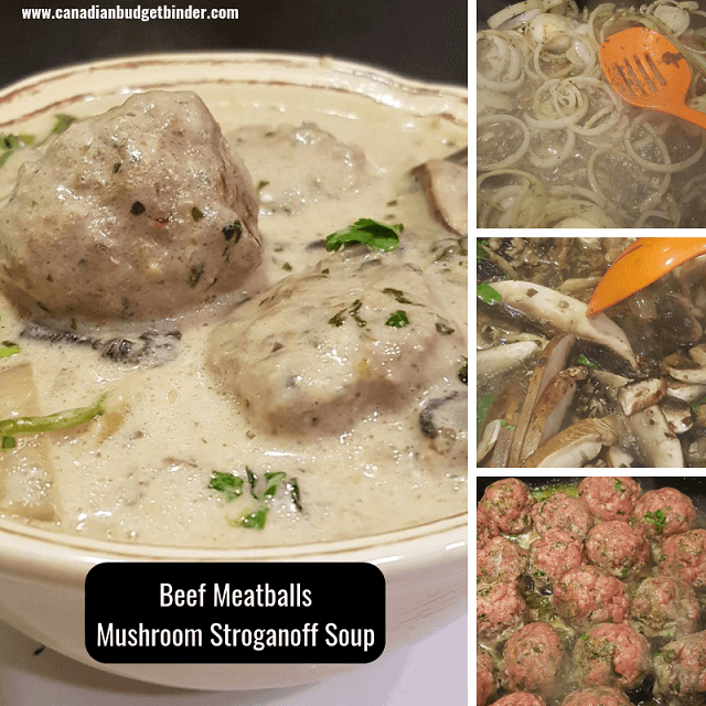 Beef Meatballs Mushroom Strognaoff Soup
