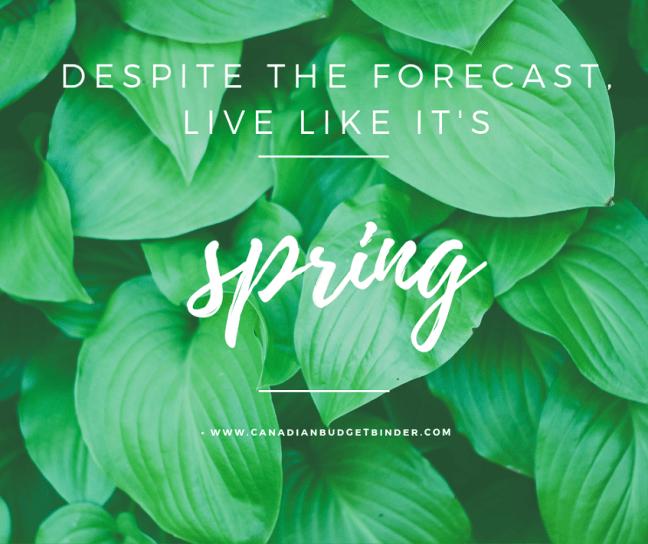 Despite the forecast, live like it's Spring