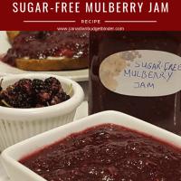 keto sugar-free mulberry jam