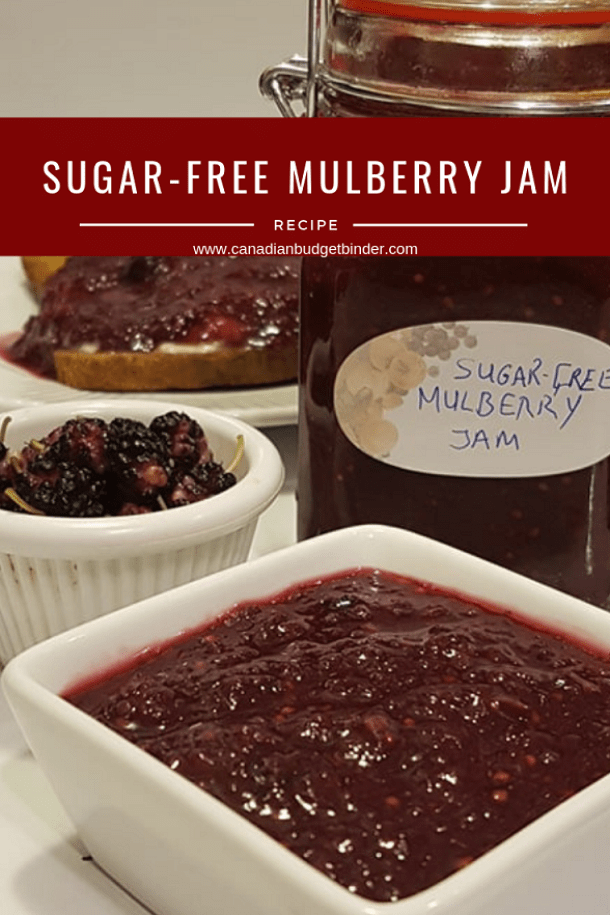 Easy Sugar-Free Mulberry Jam (Keto)