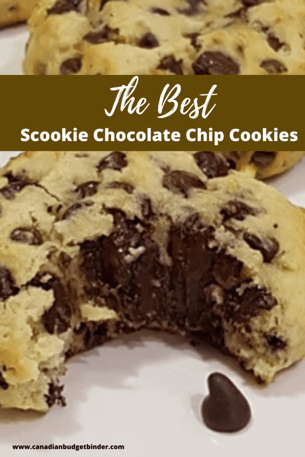 Scookies Chocolate Chip Cookies