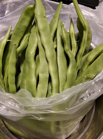 Italian Long Beans
