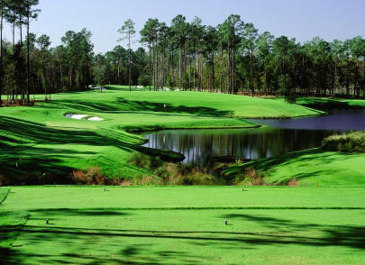 Tom Fazio's TPC at Myrtle Beach: A standout in the area