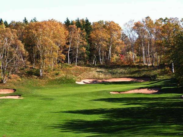 The 17th hole before tree removal (courtesy GCA)