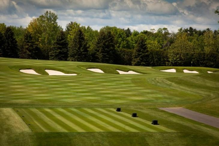 Ian Andrew's work at Laval with Mike Weir