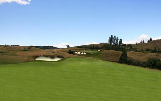 A digital creation of one of the holes proposed for the a potential Weir Golf Design site near Predator Ridge in Vernon, B.C.