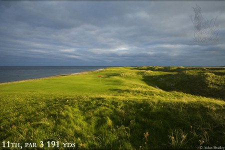 another beauty Askernish photo