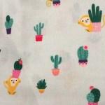 Lin et cactus