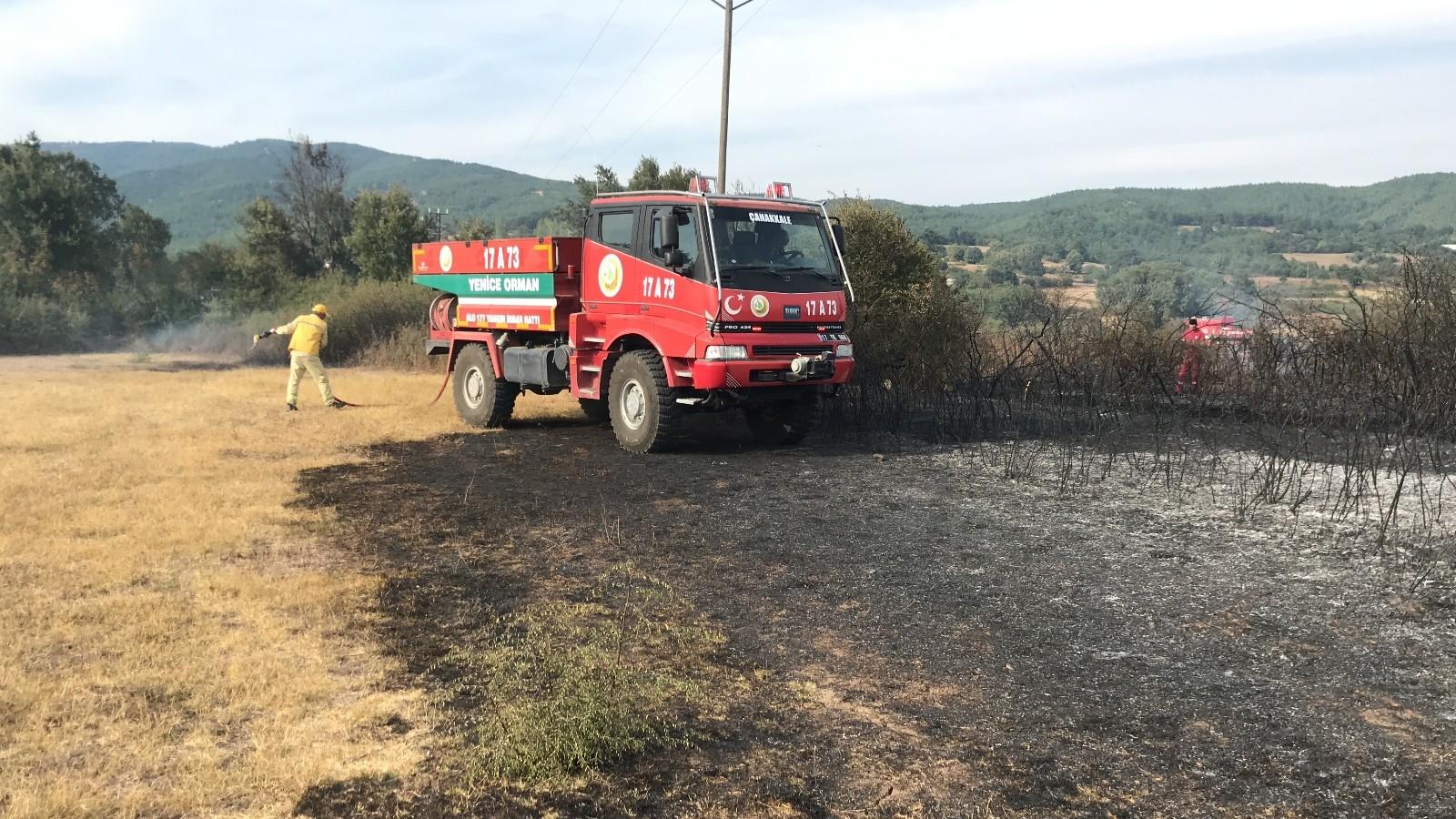 Yenice'de anız yangını