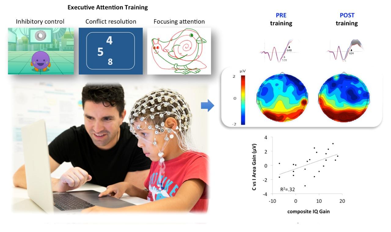 Un estudio revela que entrenar la atención mejora la inteligencia y el funcionamiento del cerebro de los niños
