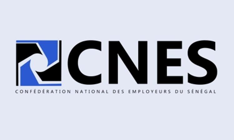 Logo du Confédération Nationale des Employeurs du Sénégal (CNES).