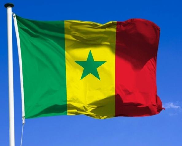 drapeau du senegal.