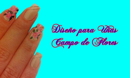 Fotos o Imagenes de Uñas Decoradas, Manicure, Diseño de Uñas de Campo de Flores paso a paso 3