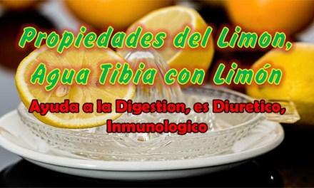 Propiedades del Limon, Agua Tibia con Limon Ayuda a la Digestion, es Diuretico, Inmunologico