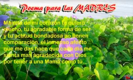 Poesias o Poemas o Mensajes para el dia de la Madre – Feliz dia de la Madre – Feliz dia Mama