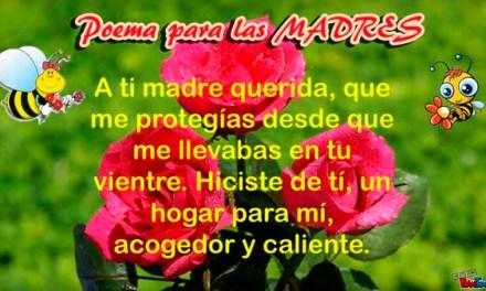 Mensajes o Poemas o Poesias para el dia de la Madre – Feliz dia de la Madre – Feliz dia Mama