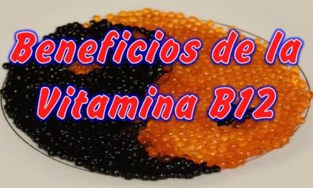 Vitamina B12 para que sirve y Beneficios, que Alimentos tienen vitamina B12