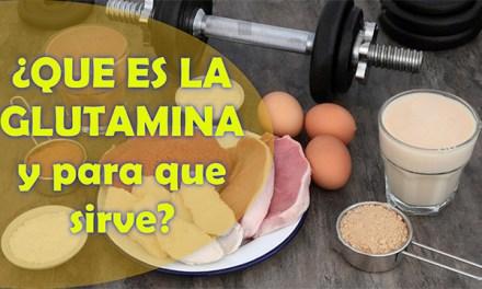 Que es la glutamina y para que sirve, por qué es esencial incluirlo en nuestra dieta