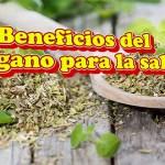 Beneficios del Orégano para la salud