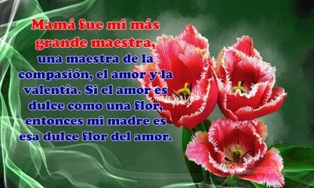 Feliz Dia de la Madre 3