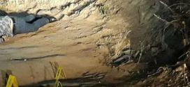 Padre e hijo fueron baleados por sicarios en zona rural de Guacari.