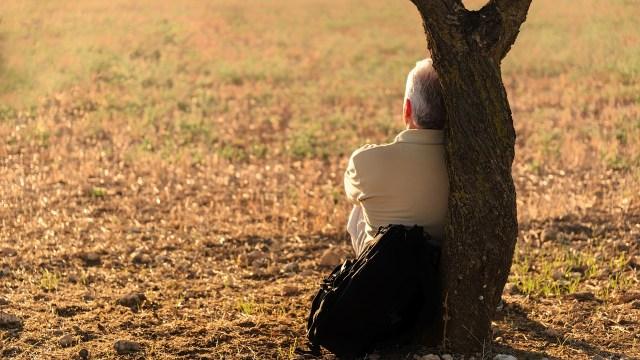 soledad y cerebro