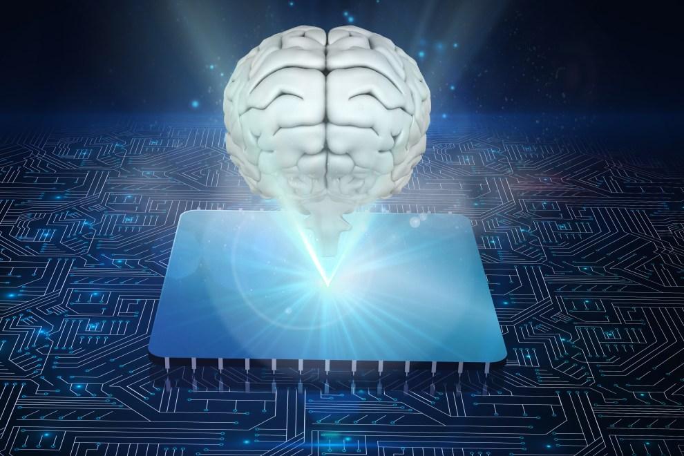 cerebro del programador