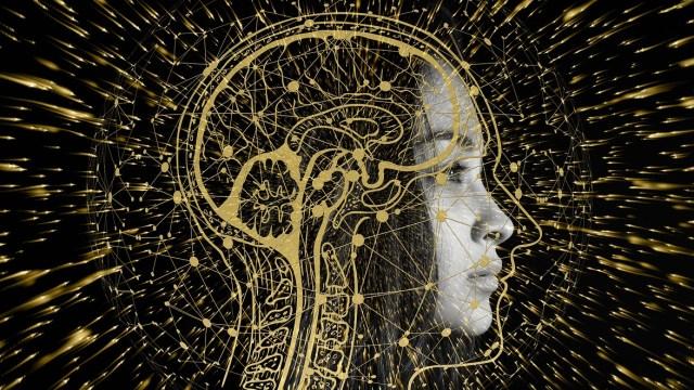 belleza en el interior cerebro estudio inteligencia artificial