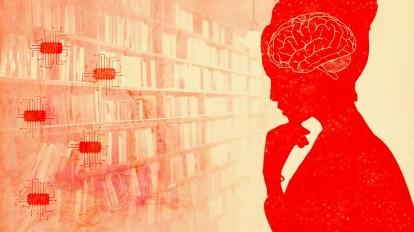 ¿Cómo procesa el cerebro de manera flexible la información compleja?